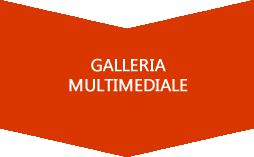 multimedia.fw.png